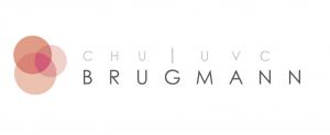 brugmann-logo